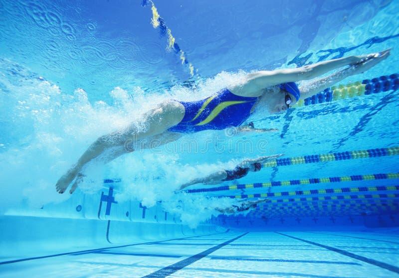 Jonge vrouwelijke professionele deelnemers die in pool rennen stock foto's