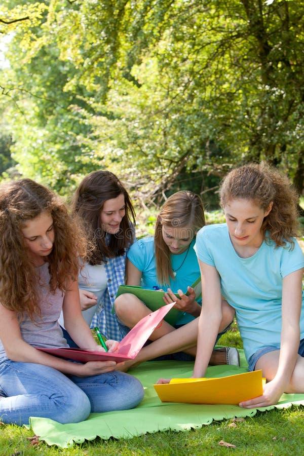 Jonge vrouwelijke universiteitsvrienden die in openlucht bestuderen royalty-vrije stock fotografie