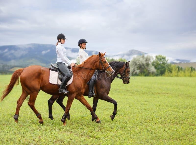 Jonge vrouwen die paarden berijden op bergweide royalty-vrije stock foto's