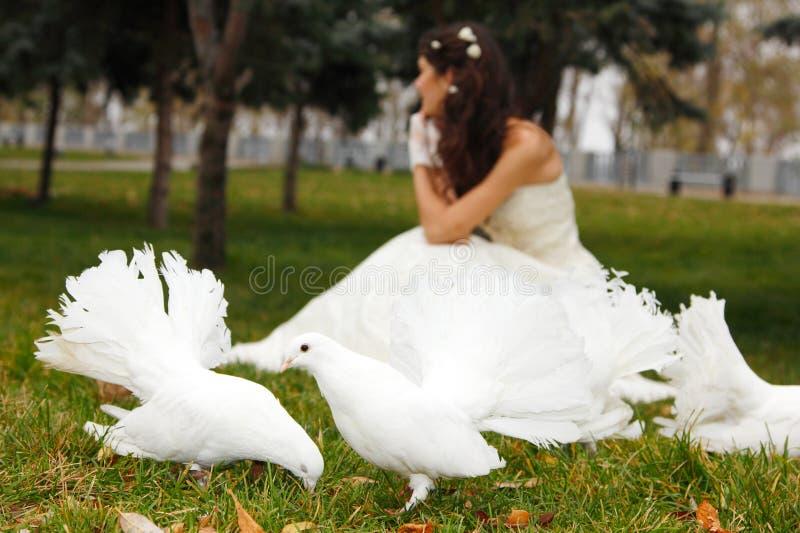 Jonge vrouwenbruid die met witte duiven in de parkherfst outd glimlachen royalty-vrije stock foto