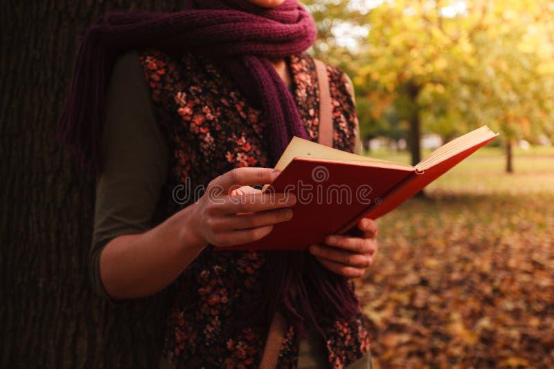 Jonge vrouwenlezing in het park stock afbeeldingen