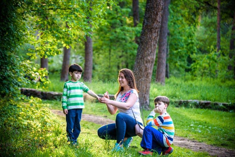 Jonge vrouwenmoeder die insektenwerend middel toepassen op haar zoon twee vóór het bos de stijgings mooie zomer dag of gelijk mak royalty-vrije stock afbeeldingen