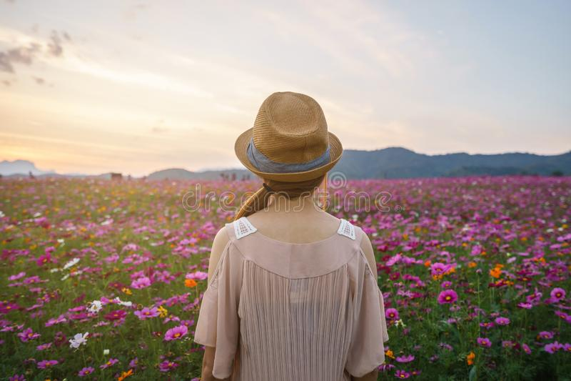 Jonge vrouwenreiziger die mooi bloemengebied kijken stock afbeelding