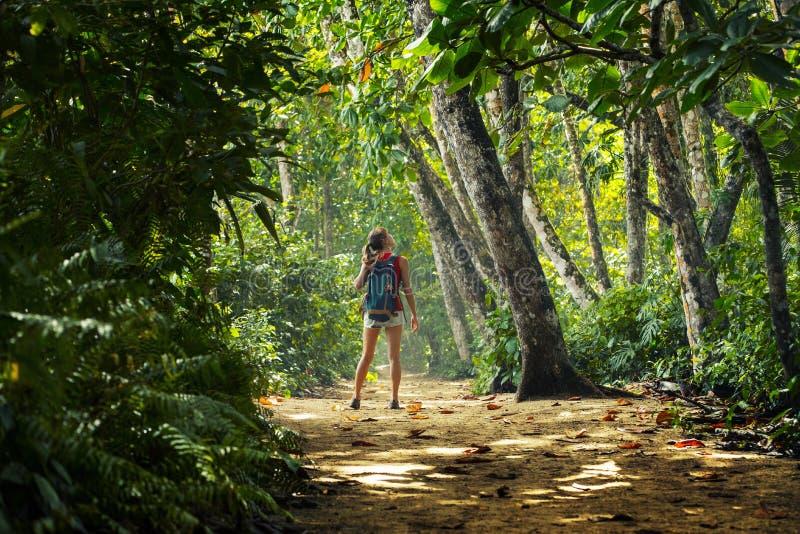 Jonge vrouwenwandelaar stock afbeelding