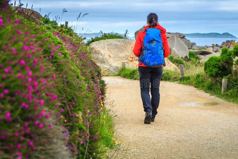 Jonge wandelaarvrouw met rugzak in aard, Ploumanach, Frankrijk royalty-vrije stock foto