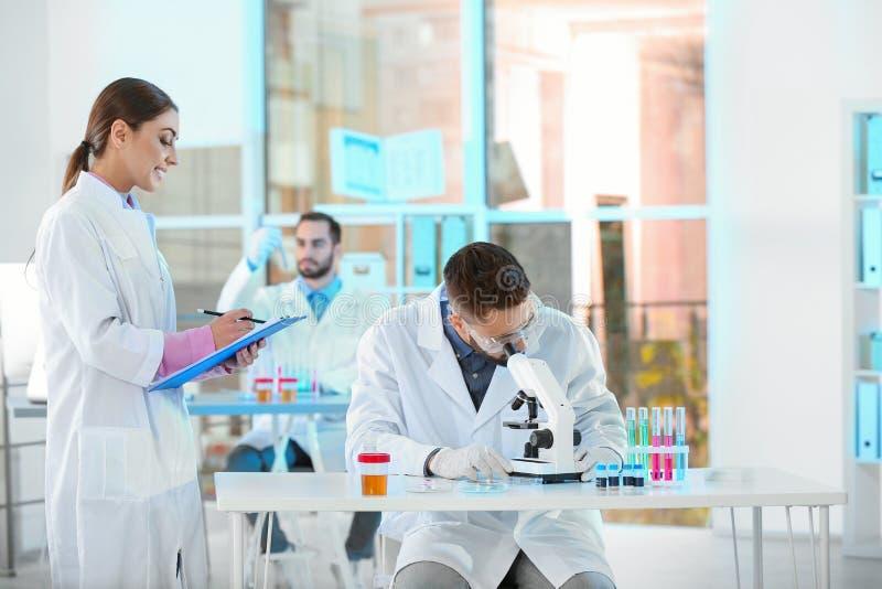 Jonge wetenschappers die in laboratorium werken chemisch stock foto