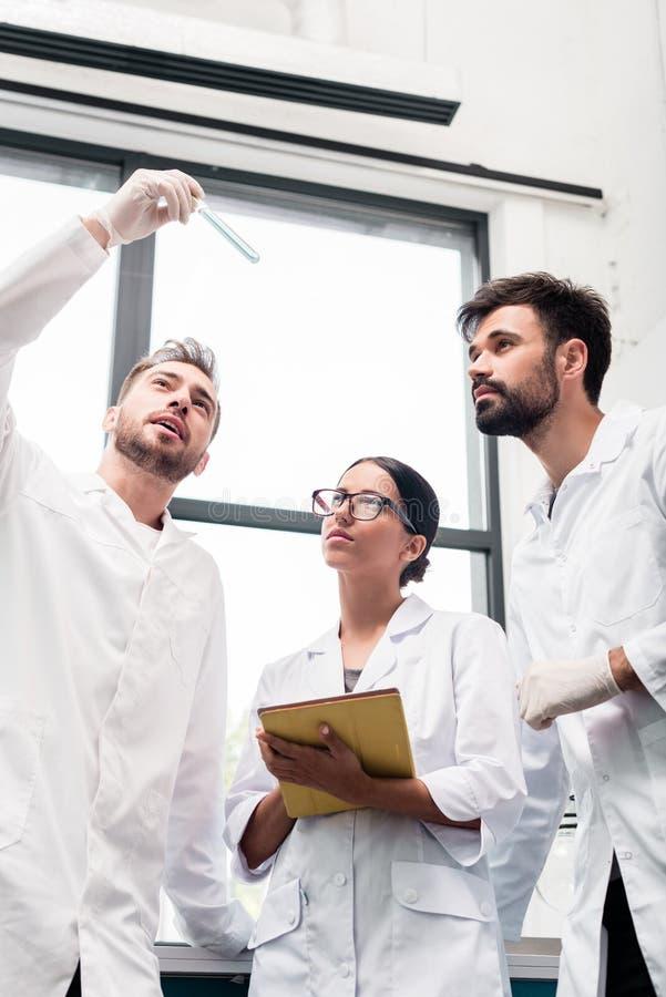 Jonge wetenschappers in witte lagen die reageerbuis onderzoeken en digitale tablet gebruiken stock afbeeldingen