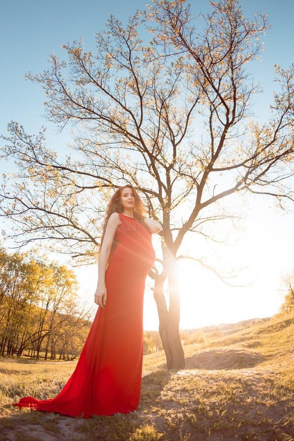 Download Jonge Zwangere Vrouw Die En Van Het Leven Ontspannen Genieten Stock Afbeelding - Afbeelding bestaande uit motherhood, kaukasisch: 54082175