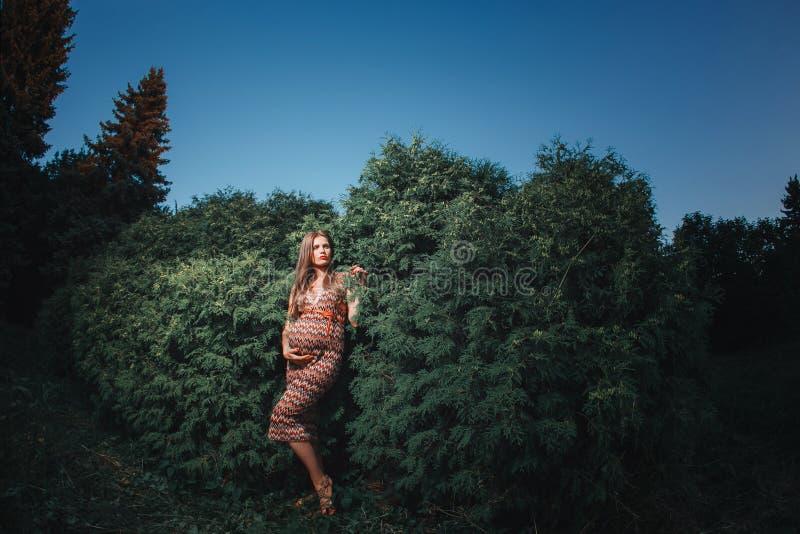 Jonge zwangere vrouw in het park in openlucht Kalme zwangere vrouw in derde trimester Het lopen in openbare tuin Bomen binnen royalty-vrije stock fotografie