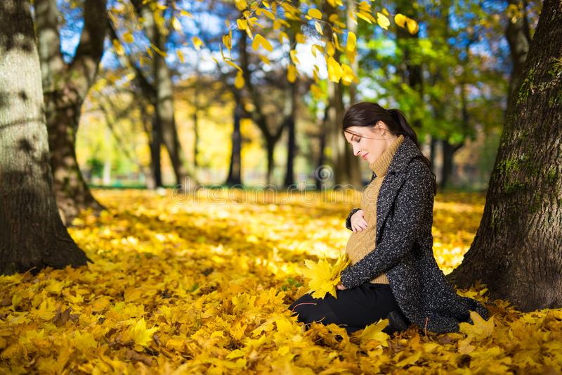 Jonge zwangere vrouwenzitting in de herfstpark royalty-vrije stock foto