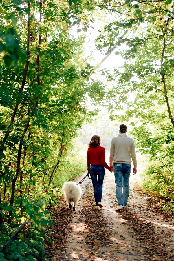 Jongelui koppelt aan een hond lopend langs het de herfstpark zij in een rode sweater is hij in wit met schor samoyed hond is royalty-vrije stock foto's