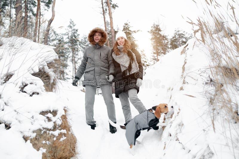 Jongelui koppelt, lopen een man en een vrouw met hun hond in de vrije tijd van de de winter snow-covered boswinter Hondminnaars royalty-vrije stock afbeelding