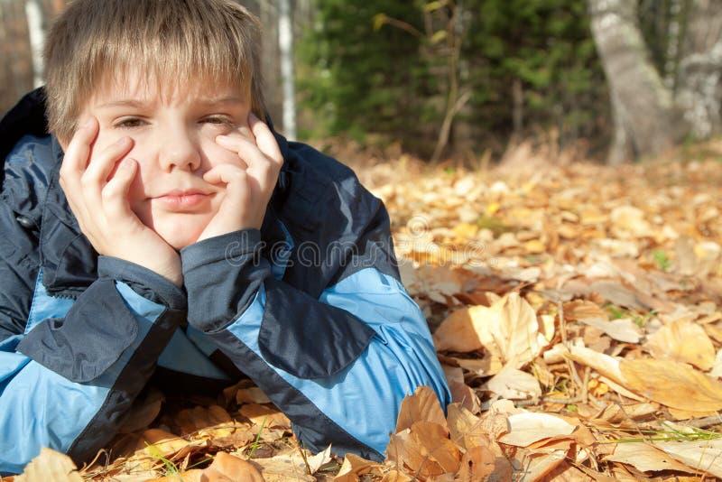 Jongen in de herfstpark royalty-vrije stock fotografie