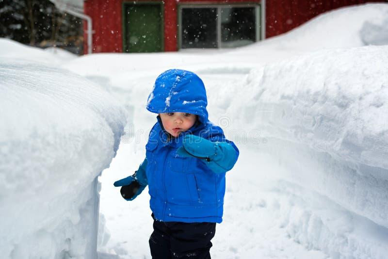 Jongen die Sneeuw op Zijn Handschoen kijken stock afbeeldingen