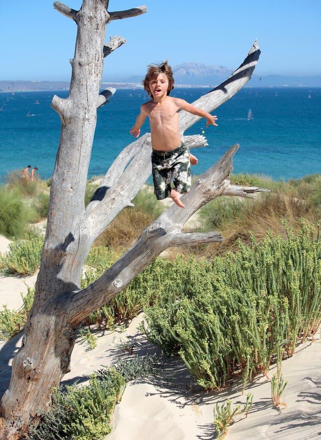 Jongen die uit boom op vakantie springt royalty-vrije stock afbeelding
