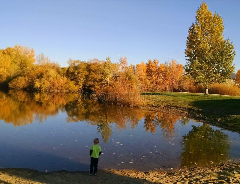 Jongen door meer met dalingskleuren in bomen royalty-vrije stock foto