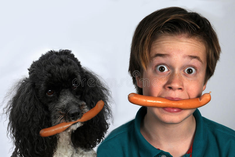 Jongen en hond die worsten eten stock afbeeldingen