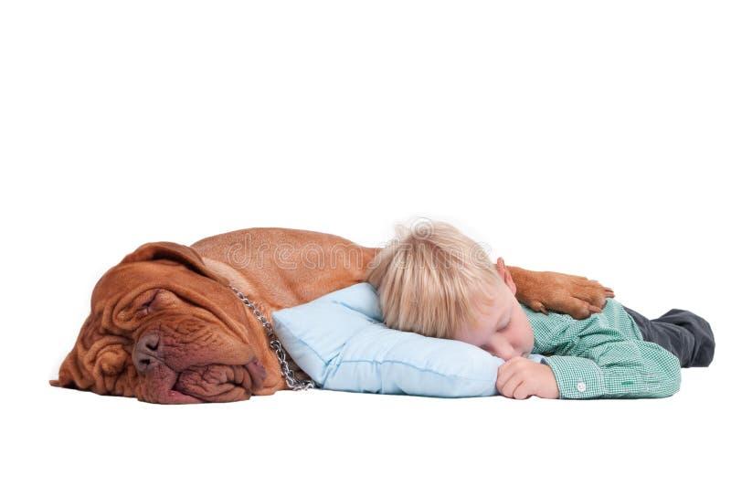 Jongen en hond in slaap op de vloer royalty-vrije stock afbeeldingen