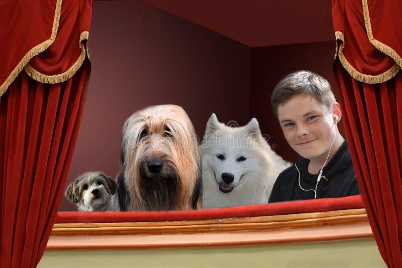 Jongen en honden in theater stock afbeelding
