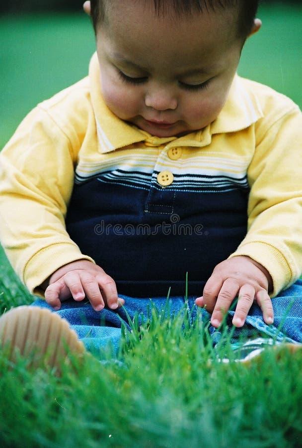 Jongen In Gras Royalty-vrije Stock Foto's