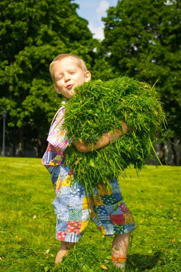 Jongen in het gras stock fotografie