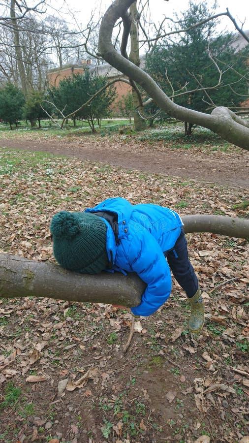 Jongen het hangen bij het koesteren van boomtak stock foto