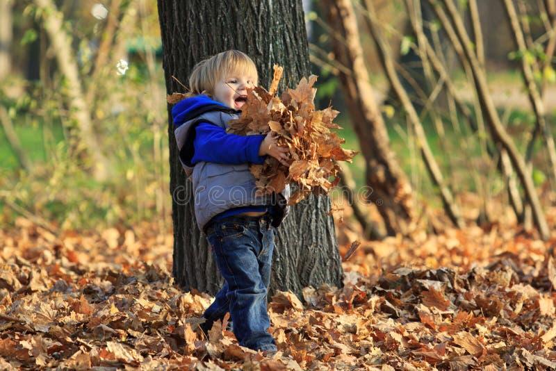 Jongen het spelen met bladeren in een park stock fotografie