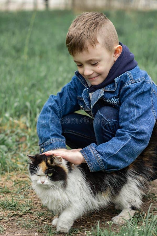 Jongen het spelen met een pluizige kat in het park royalty-vrije stock afbeelding