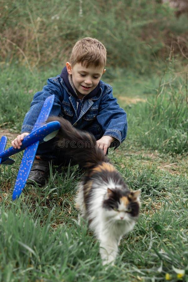 Jongen het spelen met een pluizige kat in het park stock foto's