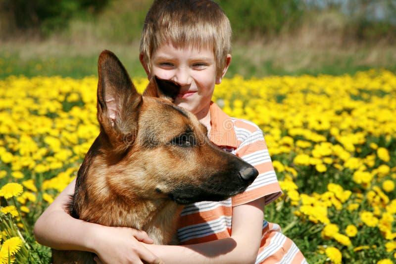 Jongen, hond en gele weide. stock fotografie