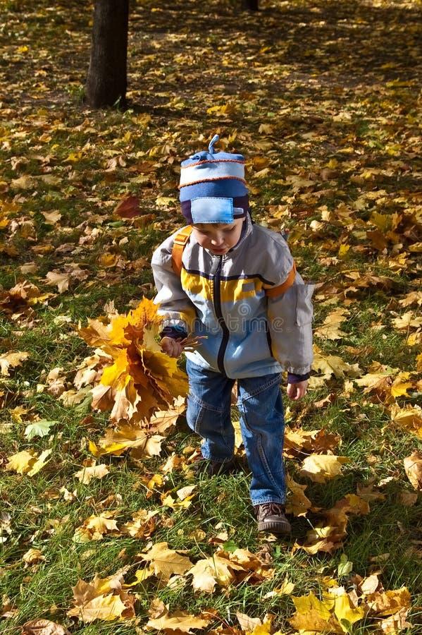 Jongen met boeket van de herfstbloemen royalty-vrije stock afbeeldingen