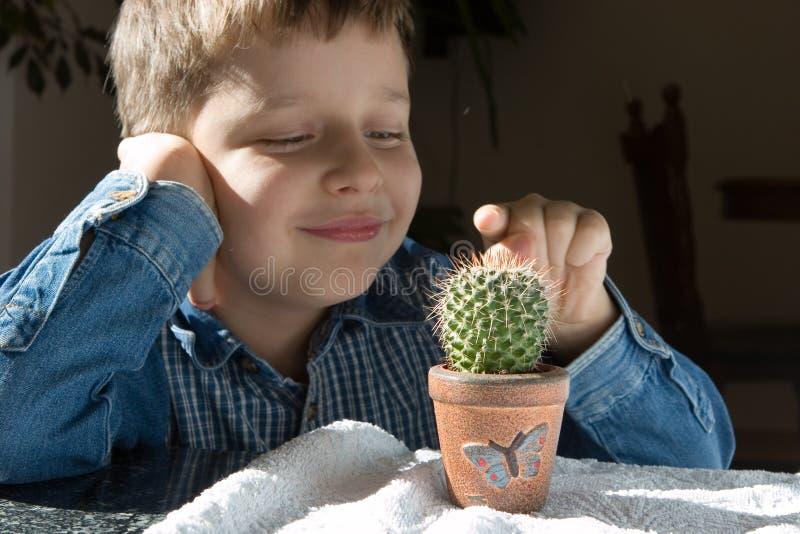 Jongen met cactus royalty-vrije stock foto's