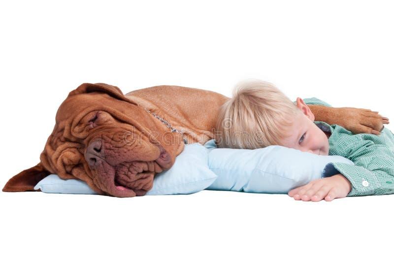 Jongen met een hond op de vloer royalty-vrije stock afbeeldingen