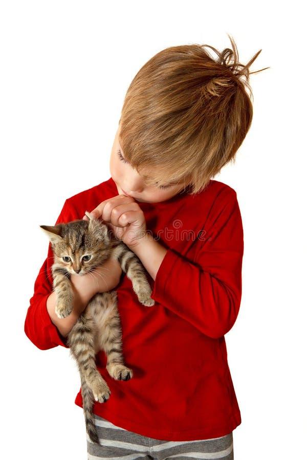 Jongen met een katje stock afbeeldingen