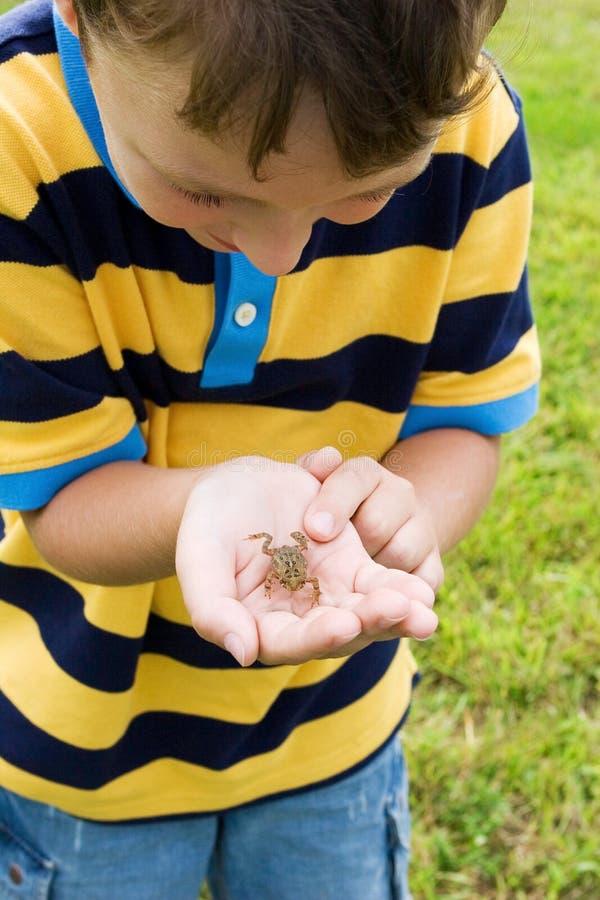 Jongen met een kikker stock fotografie