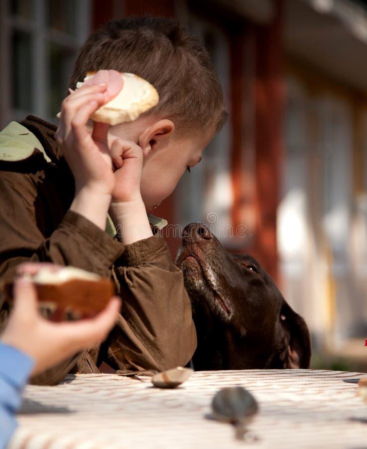 Jongen met gekweekte en boter en het bedelen hond stock foto