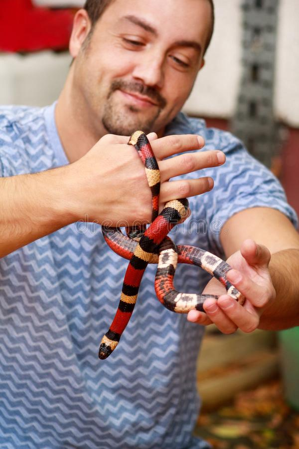 Jongen met slangen De mens houdt in van de slanglampropeltis van de handen het reptielmelk soort van triangulumarizona slang royalty-vrije stock afbeelding