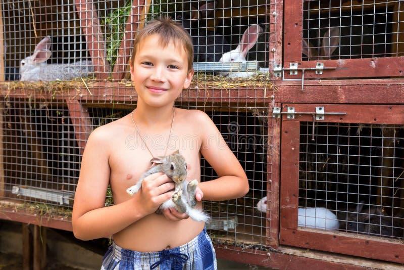 Jongen met weinig konijn royalty-vrije stock afbeeldingen