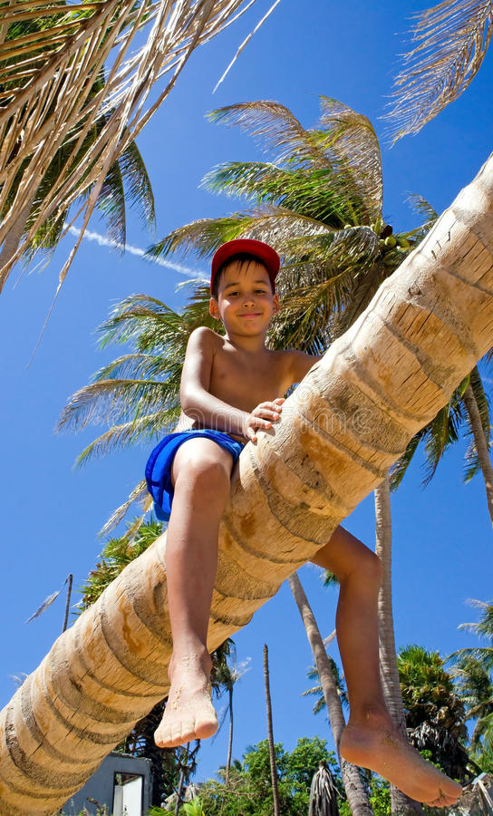 Jongen op een palm stock fotografie