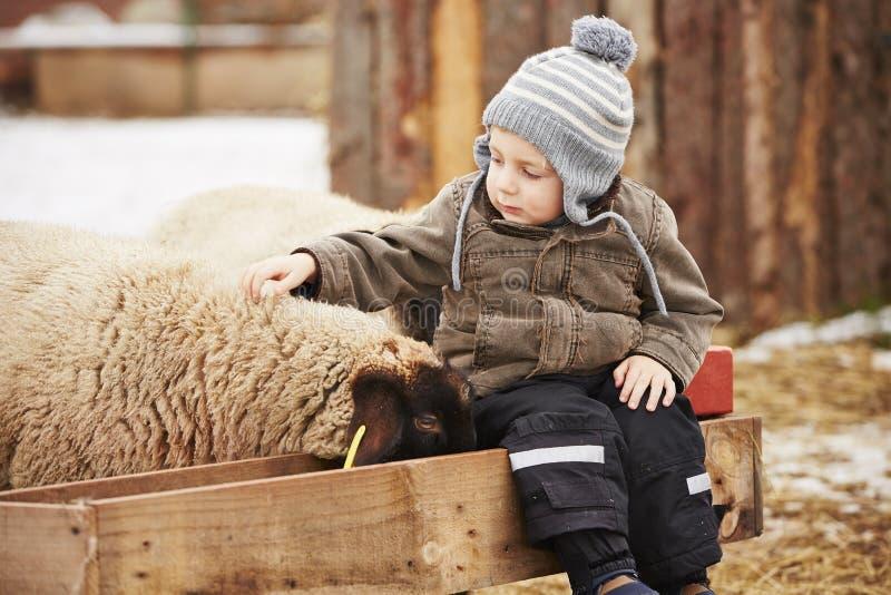 Jongen op het landbouwbedrijf stock fotografie