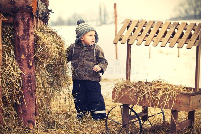 Jongen op het landbouwbedrijf royalty-vrije stock fotografie