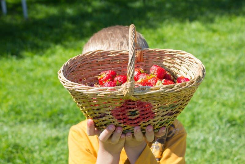 Jongen opgeheven mand van aardbeien stock foto