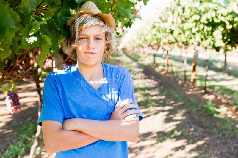 Jongen in wijngaard stock fotografie
