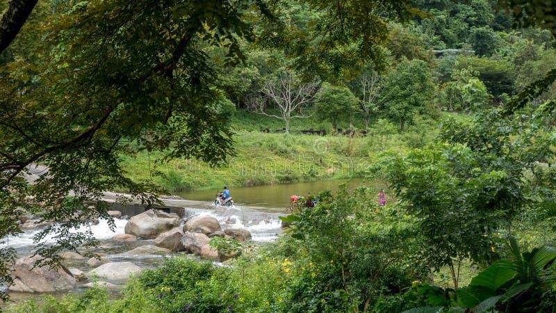 Jongens berijdende motorfiets door rivierweg stock fotografie