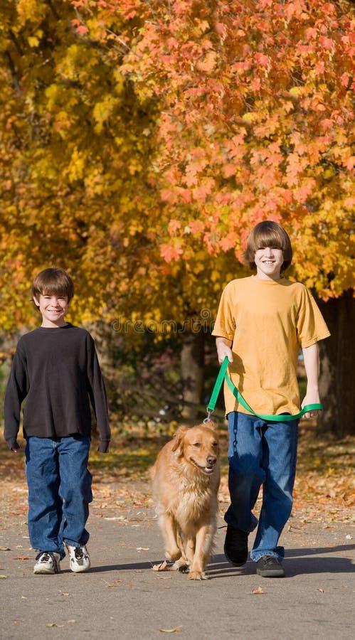 Jongens die de Hond lopen royalty-vrije stock afbeeldingen