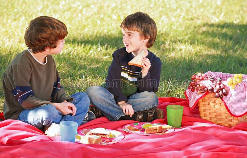 Jongens die een Picknick hebben stock fotografie