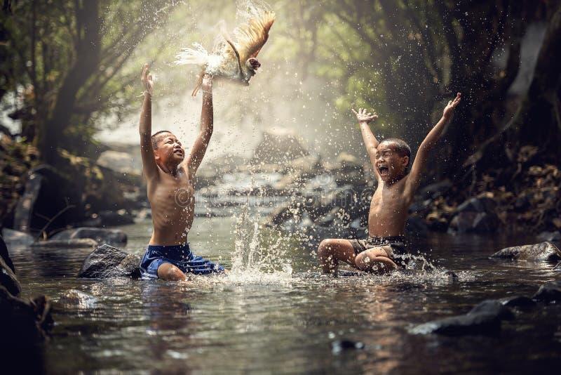Jongens die met hun eend in de kreek spelen stock afbeeldingen