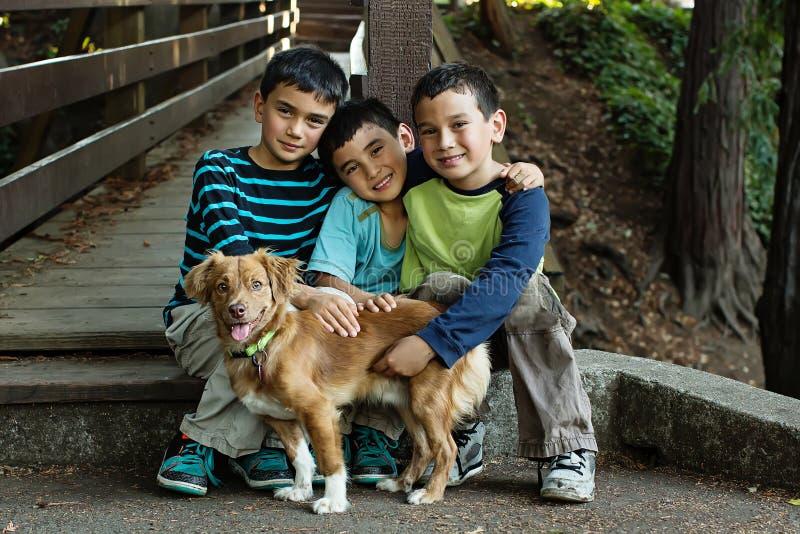 3 jongens en een hond stock afbeelding