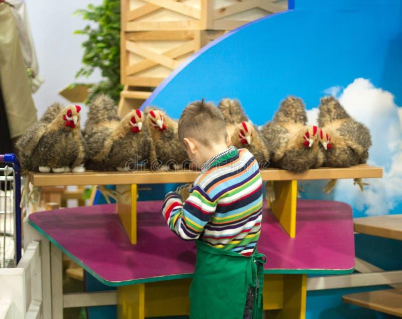 Jongenslandbouwer die eieren verzamelen stock afbeelding