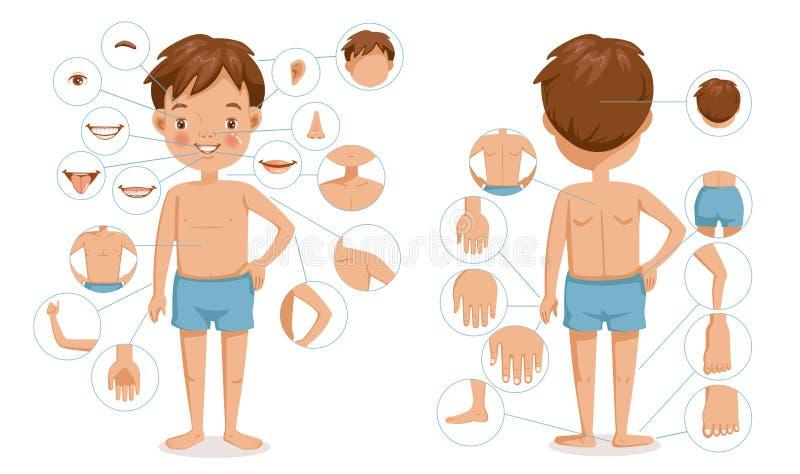 Jongenslichaam vector illustratie